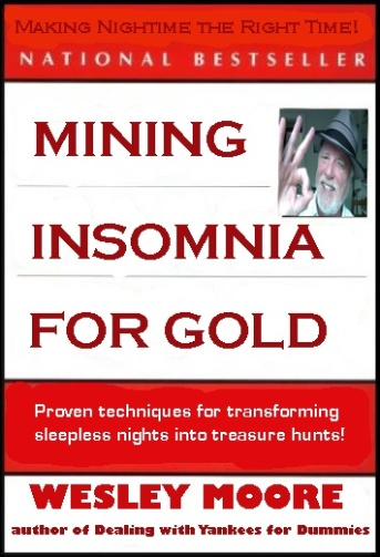 mining insomnia bookcover
