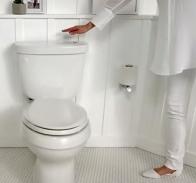 2015 toilet