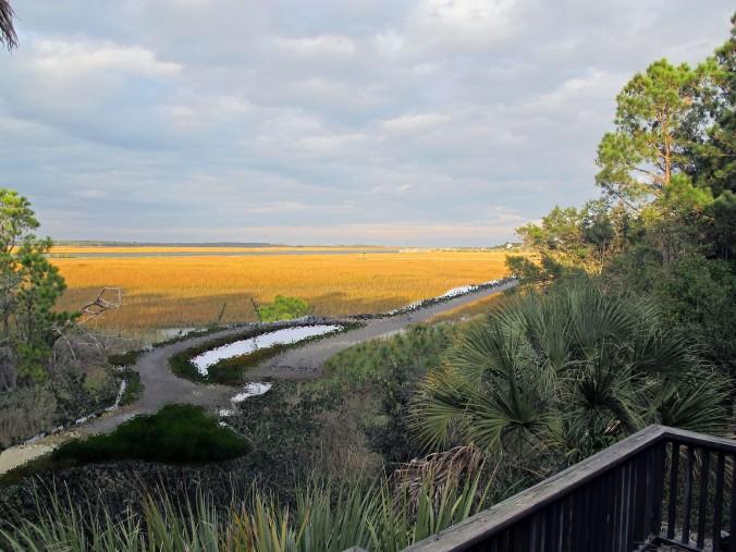 road-in-marsh