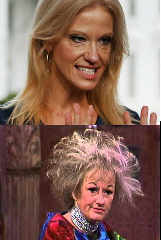 phyllis-conway
